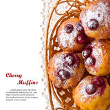 Homemade Cherry Muffins Royalty Free Stock Image