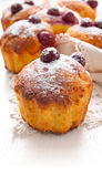 Homemade Cherry Muffins Royalty Free Stock Photography