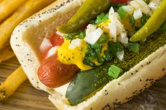 Homemade Chicago Style Hot Dog with Mustard Stock Photo