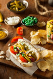 Homemade Chicago Style Hot Dog Royalty Free Stock Photography