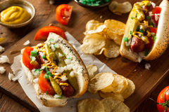 Homemade Chicago Style Hot Dog Royalty Free Stock Images