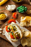 Homemade Chicago Style Hot Dog Stock Photo