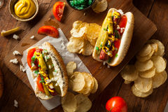Homemade Chicago Style Hot Dog Stock Photography