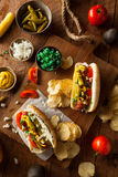 Homemade Chicago Style Hot Dog Royalty Free Stock Photos