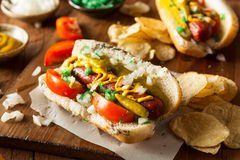 Homemade Chicago Style Hot Dog Royalty Free Stock Image