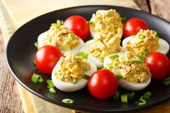 Homemade chicken eggs stuffed with canned tuna and avocado with royalty free stock images