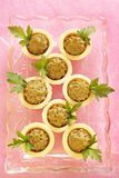 Homemade chicken liver pate in tartlets Stock Photography