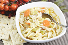 Homemade Chicken Noodle Soup Stock Photos