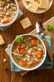 Homemade Chicken Noodle Soup Royalty Free Stock Photos