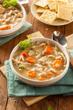 Homemade Chicken Noodle Soup Stock Images