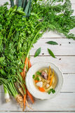 Homemade chicken noodle soup with fresh vegetables Royalty Free Stock Photography