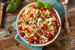 Homemade Chicken Orzo Salad Stock Photos
