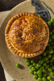 Homemade Chicken Pot Pie Royalty Free Stock Photo