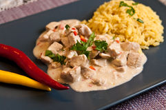 Homemade chicken with rice Thai style Stock Image