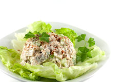 Homemade Chicken Salad Royalty Free Stock Photos