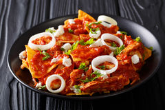 Homemade chilaquiles with chicken and tomato salsa closeup. hori. Homemade chilaquiles with chicken and tomato salsa closeup on a plate on the table. horizontal Stock Image