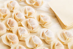 Homemade chinese dumpling Royalty Free Stock Photography