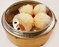 Homemade Chinese Steamed Pork and Glass noodles Dumplings, Dim Sum, prepared by Thai Chinese Chef at China town restaurant. Food stylist backgrounds menu stock images
