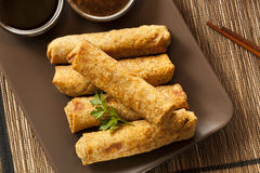Homemade Chinese Vegetable EggRolls Royalty Free Stock Photos
