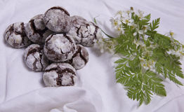 Homemade chocolate breakfast  cookies  and spring flowers. Homemade biscuit. Sweet dessert pastry Stock Photos