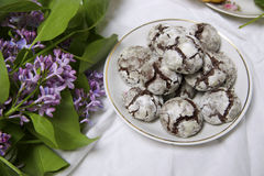 Homemade chocolate breakfast  cookies  and spring flowers. Homemade biscuit. Sweet dessert pastry Royalty Free Stock Image