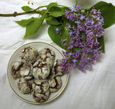 Homemade chocolate breakfast  cookies  and spring flowers. Homemade biscuit. Sweet dessert pastry Royalty Free Stock Images