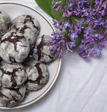 Homemade chocolate breakfast  cookies  and spring flowers. Homemade biscuit. Sweet dessert pastry Stock Photography