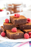 Homemade chocolate brownies Stock Images