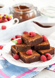 Homemade chocolate brownies Stock Photography