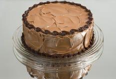 Homemade Chocolate Cake royalty free stock photo