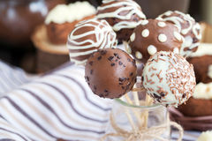 Homemade chocolate cake pops Royalty Free Stock Image
