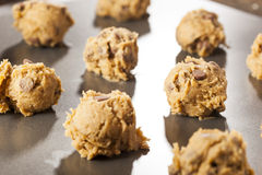 Homemade Chocolate Chip Cookie Dough Royalty Free Stock Photo