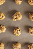 Homemade Chocolate Chip Cookie Dough Royalty Free Stock Photography