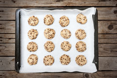Homemade chocolate chip cookie Stock Image
