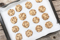 Homemade chocolate chip cookie Royalty Free Stock Photo