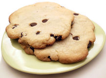 Homemade chocolate chip cookies. Big freshly baked chocolate chip cookies on small plate Stock Image