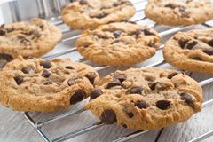 Homemade Chocolate Chip Cookies. Delicious homemade chocolate chip cookies cooling on a rack royalty free stock images