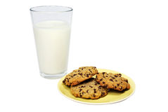 Homemade Chocolate Chip Cookies and Milk Royalty Free Stock Photography