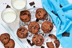 Homemade chocolate chip cookies with milk. Homemade chocolate chip cookies on a white background with milk royalty free stock photos