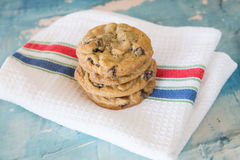 Homemade chocolate chip cookies Royalty Free Stock Photo
