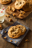 Homemade Chocolate Chip Cookies Royalty Free Stock Images