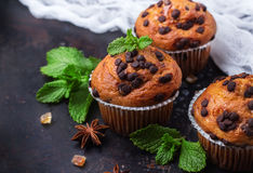 Free Homemade Chocolate Chip Spicy Muffins Cake For Breakfast Stock Photography - 77493402