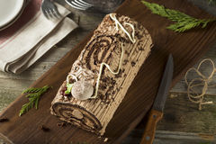 Homemade Chocolate Christmas Yule Log Stock Images