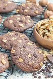 Homemade chocolate cookies with walnuts and chocolate chips on cooling rack, vertical Stock Image