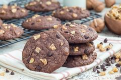 Homemade chocolate cookies with walnuts and chocolate chips on table and cooling rack, horizontal Royalty Free Stock Photo