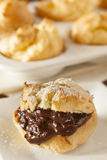 Homemade Chocolate Cream Puffs Royalty Free Stock Photography