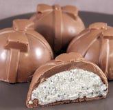 Homemade chocolate dessert with curd Stock Photos