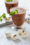 Homemade chocolate egg cream with toasted marshmallows Stock Photography