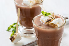 Homemade chocolate egg cream with toasted marshmallows Royalty Free Stock Photography