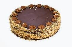 Homemade chocolate hazelnut cake Stock Images